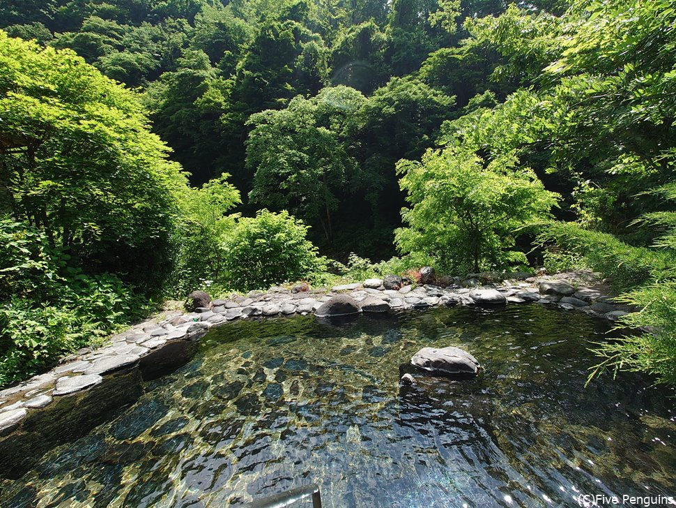 取り囲む緑緑・・・これはまさに秘湯です