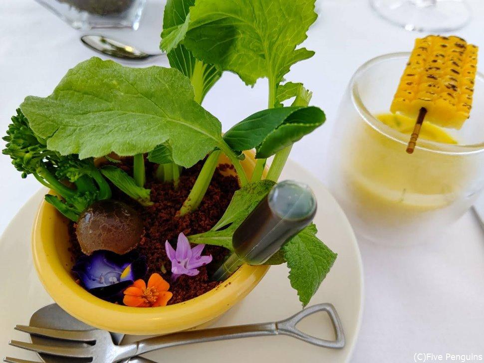 植木鉢 トウモロコシのスープも一緒に出た