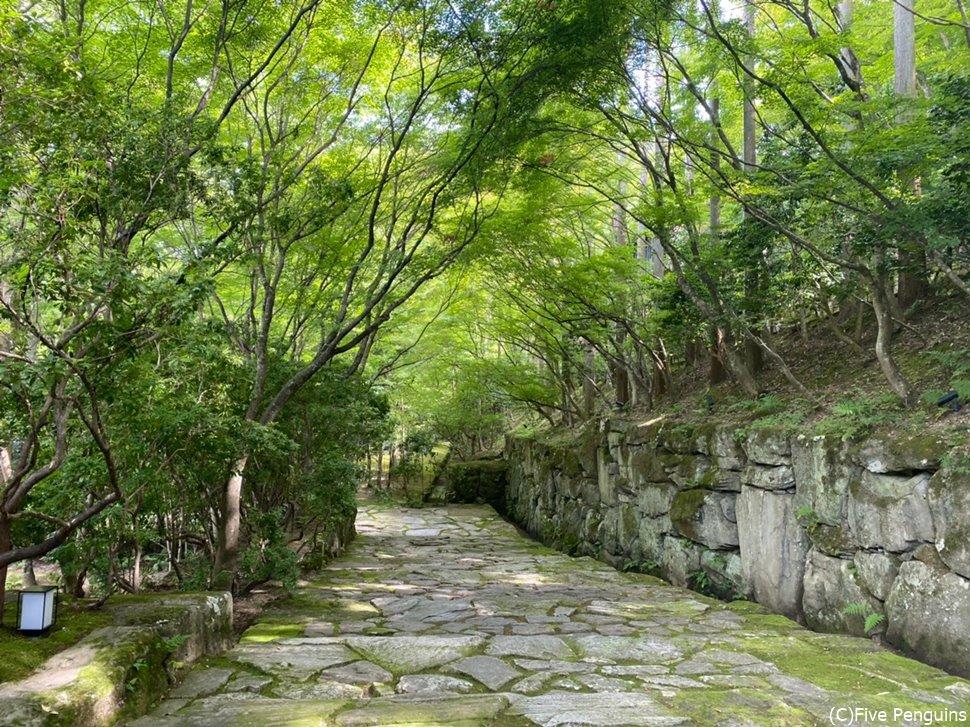 まるでお寺の参道のような敷地