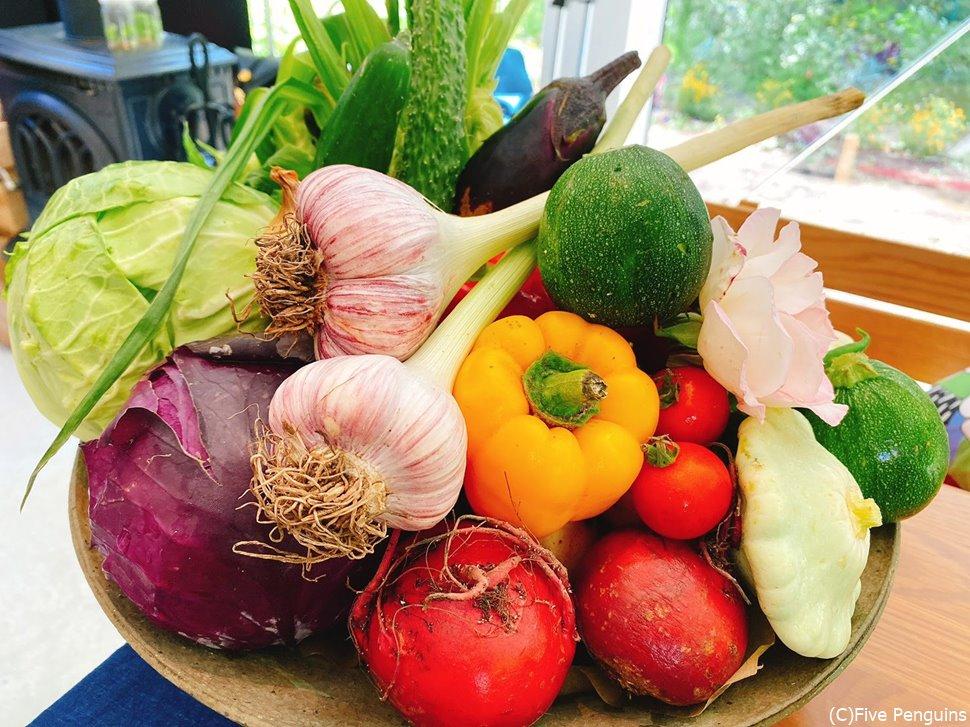 シェフが愛してやまない野菜たち大集合