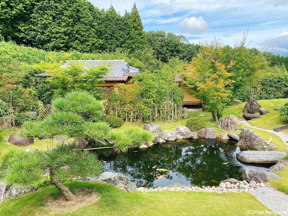 鯉が泳ぐ池や茶室もある大きな庭は素晴らしいの一言