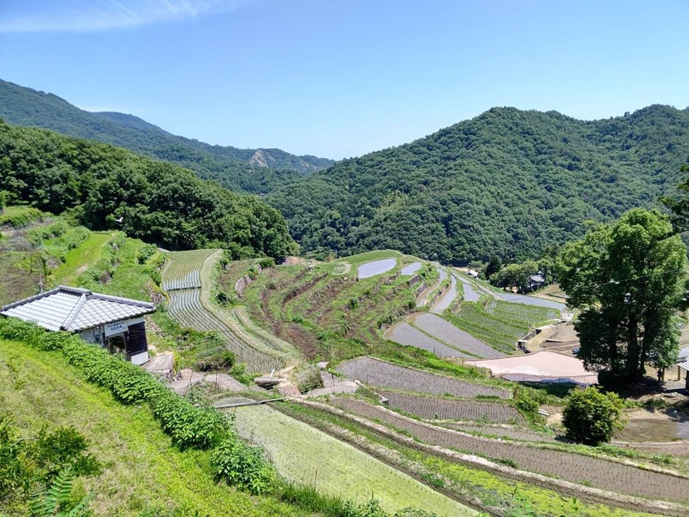 香川/小豆島